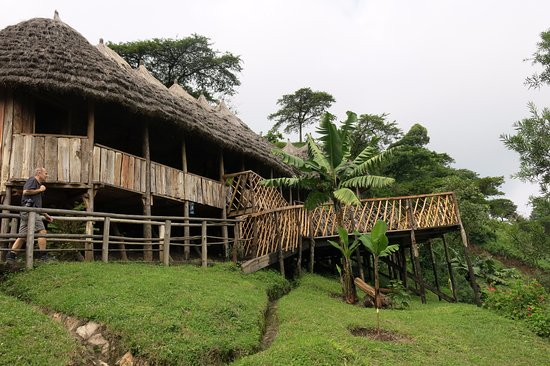 Mid-range accommodation, accommodation in mountain Elgon