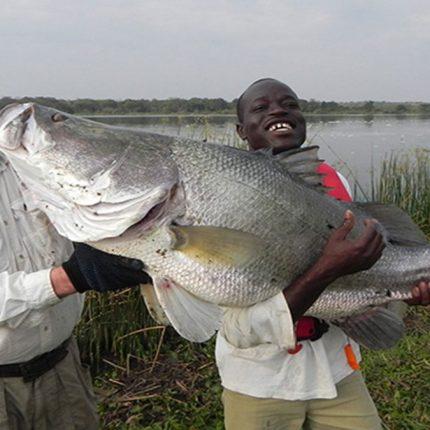 sport fishing safari, filming fishing safari